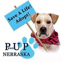 Paws UP Nebraska