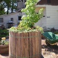 The Tire Garden