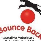 Bounce Back Integrative Veterinary Rehabilitation LLC
