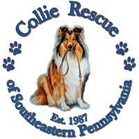 Collie Rescue of SEPA