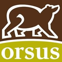 Orsus Property Management