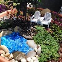 Sandy's Succulents & Miniature Gardens
