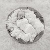 Nesting Photography