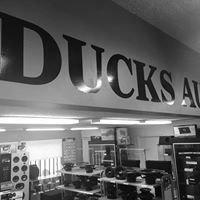 Ducks Audio