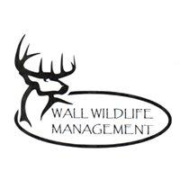 Wall Wildlife Management