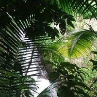 Larkins Myrtle Beach Condo- Rental
