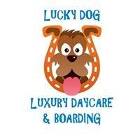 Lucky Dog Luxury Daycare & Boarding