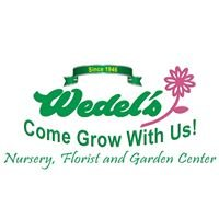 Wedel's