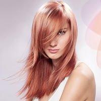 Colour Bar For Hair