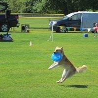 Essex Dog Park