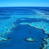 Barrier Reef Depot