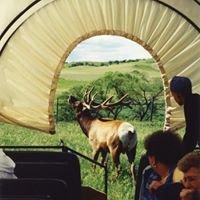 Kreycik Elk & Buffalo Ranch