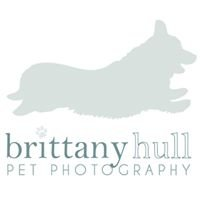 Brittany Hull Pet Photography