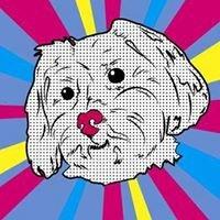 Zoe Swan's Pet Grooming
