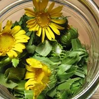 Mother McCaul's Organic Herbal Body Care
