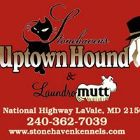Uptown Hound and Laundromutt