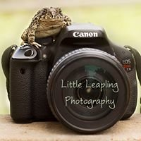 Little Leapling Photography