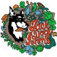 Jack Dog Farms