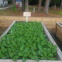 LINC Urban Farm