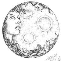 Birch Moon Apothecary & Wildcrafts
