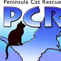 Peninsula Cat Rescue Inc.