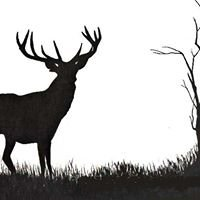 Deer Grove RV Park