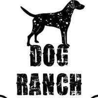 Dog Ranch Naples