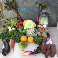 Solace Organic Farm