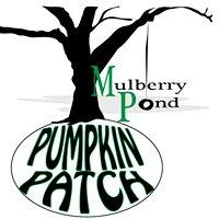 Mulberry Pond Pumpkin Patch
