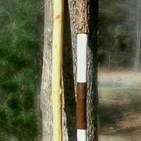 Bama-Hiking Staffs 'N' Walking Sticks