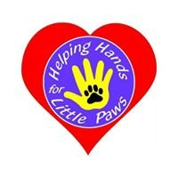 Helping Hands for Little Paws