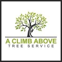 A Climb Above Tree Service