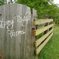 Stony Ridge Farms