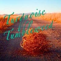 Turquoise Tumbleweed