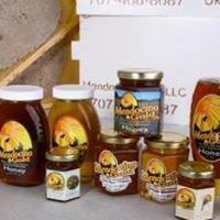 Mendocino Gold Honey