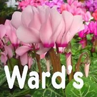 Ward's Nursery & Garden Center