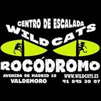Wild Cats Rocódromo
