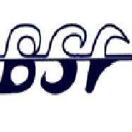 Bizkaiko Surf Federazioa