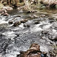 Hillsborough River State Park Rapids Trail