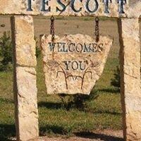 Tescott Kansas Public Information