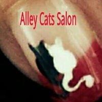 Alley Cats Salon