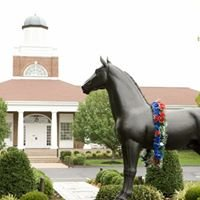 Tennessee Walking Horse Breeders' & Exhibitors' Association