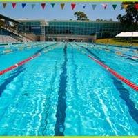 Lane Cove Swim Squads