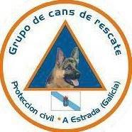 Gcr Avpc A Estrada