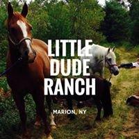 Little Dude Ranch