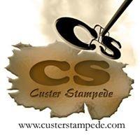 Custer Stampede Buffalo Art Auction