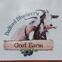 Bedford Blueberry Goat Farm