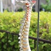 Norfolk Chiropractic Wellness Centre