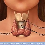 Hashimoto Thyroiditis  Treatment By Dr Tahir MD  Rochester & Syracuse  NY