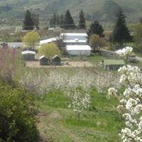 Stutzman Ranch